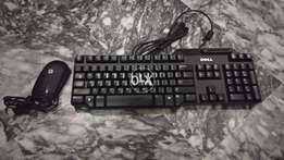 Dell smartie branded keyboard and HP mouse