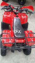 100 CC Back and broad seat quad Atv bike for sell deliver all over pak