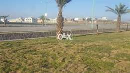 7M Green Land Plot For Sale in Umar block Bahria town Rawalpindi