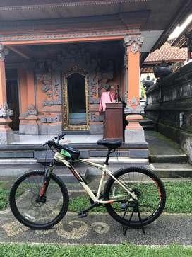 Sepeda Polygon - Jual Sepeda & Aksesoris Terlengkap di