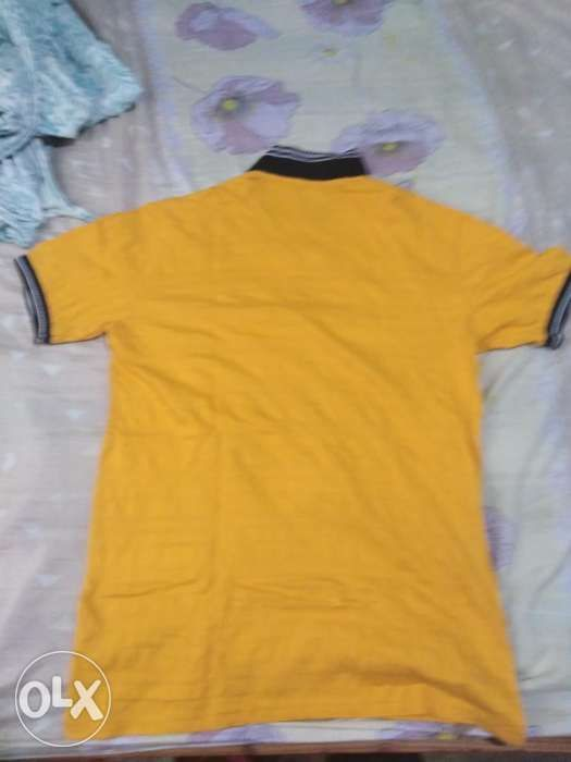 3bee7e5f55 For sale lee pipes polo shirt in General Trias