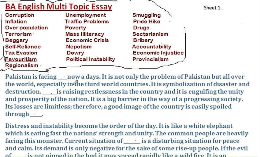bsc english essay notes