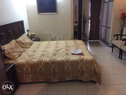 1kanal brand new furnished portion 4rent in bahria town rwp
