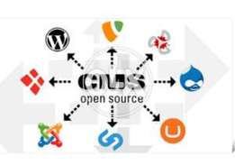 Open Source CMS Development Services at Reasonable Rates