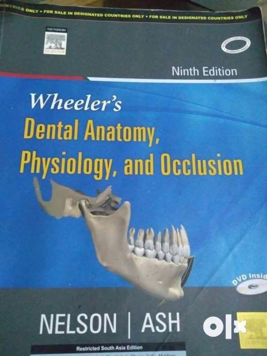 Wheeler\'s Dental Anatomy, Physiology And Occlusion Book ...