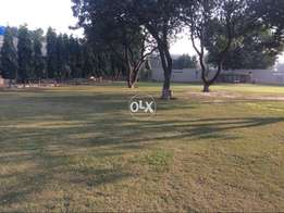 8 marla corner and facing park plot in C block bahria orchard