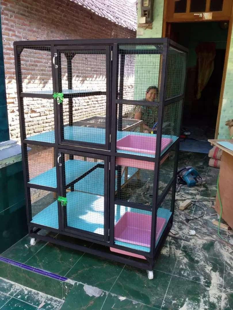 Kandang Kucing Anggora Bahan Kayu Mahoni Sby Hewan Peliharaan 761125239