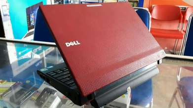 netbook Dell 2Gb dual Cpu 250gb 10inch