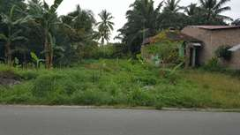 Dijual Tanah Murah Cari Tanah Di Ujung Padang Olx Co Id