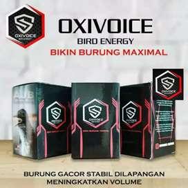 Burung Kenari di Jakarta Timur - OLX Murah Dengan Harga ...