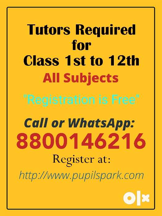 We Need Tutors In Punjabi Bagh For ALL SUBECTS - Education