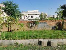 Plot available in services cooperative Islamabad E /11-2