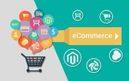 Candidate should maintain E Commerce site. Should