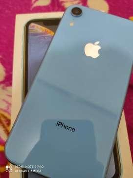 Iphone Xr - Jual Handphone Murah & Berkualitas di ...
