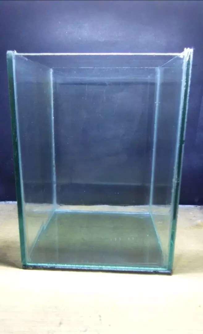Aquarium Ikan Hias Kecil Hewan Peliharaan 793155218