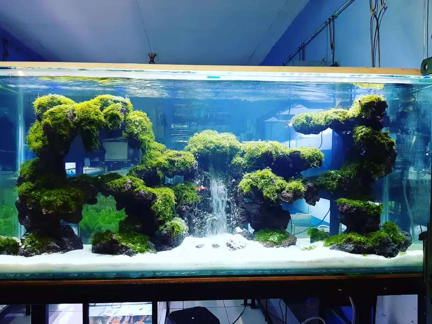 Waterfall Aquascape Hewan Peliharaan 772830283