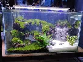 Aquarium Jual Hewan Peliharaan Terlengkap Di Jawa Barat Olx Co Id