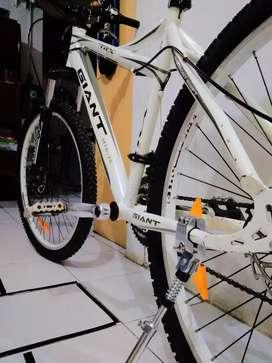 Sepeda Keren Jual Sepeda Gunung Terlengkap Di Depok Kota Olx Co Id