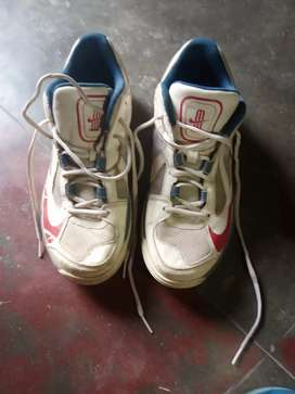 5ba4ebed914b Nike Cricket Spikes