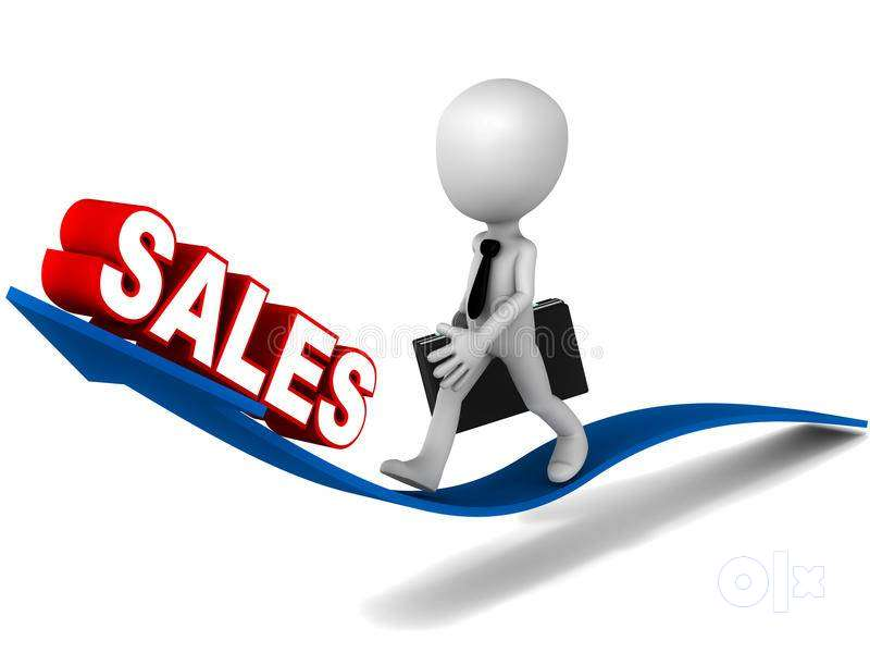 Sales executive - Sales & Marketing - 1598227957