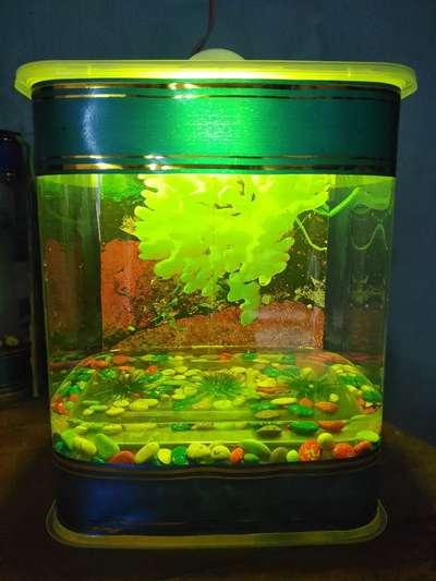 Aquarium Persegi Kotak Ikan Cupang Hiasan Lampu Tidur Hewan Peliharaan 803407914
