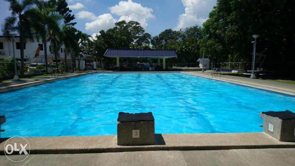Private swimming lesson female certified swimming coach - Private swimming pool near metro manila ...