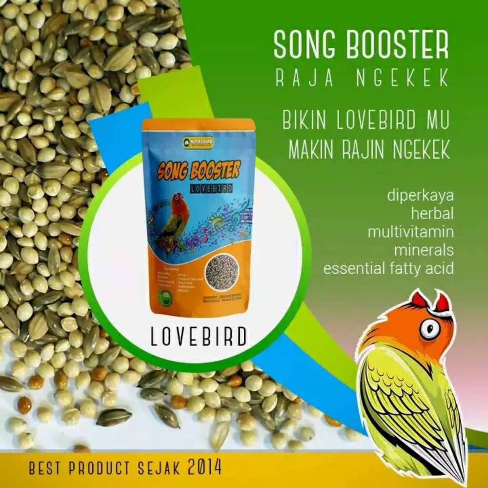 Pakan Gacor Song Booster Lovebird Hewan Peliharaan 786264116