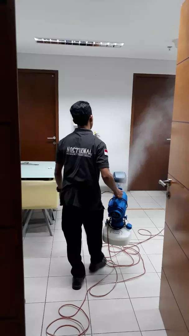 Pest Control Termite Control Jasa 799069677