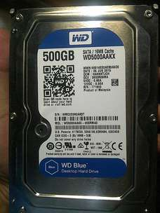 Hardisk HDD Western Digital WD Blue 500GB for PC Desktop
