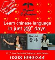 Chinese Language Classes by Expert Teachers