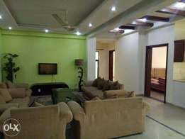 furnished apartment for rent in safari villas 1 bahria town