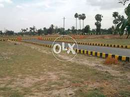 Zone A 1000 Sq Yard Plot For Sale DHA Phase 8 Away From Sea