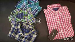 Xport quality shirts available 100%cotton