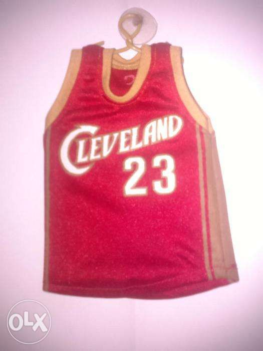 new arrival beb12 28d7e LeBron James Mini Jersey in Manila, Metro Manila (NCR) | OLX.ph