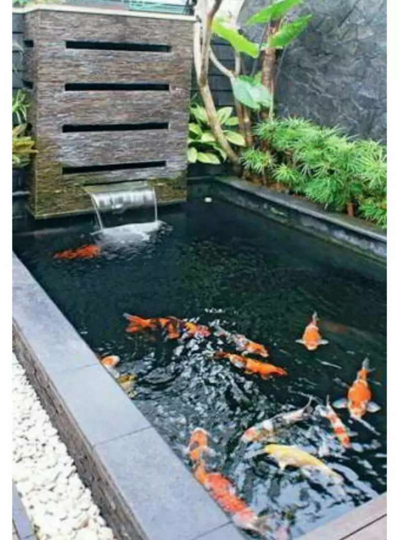 Kolam Ikan Minimalis Modern Konstruksi Dan Taman 791520030