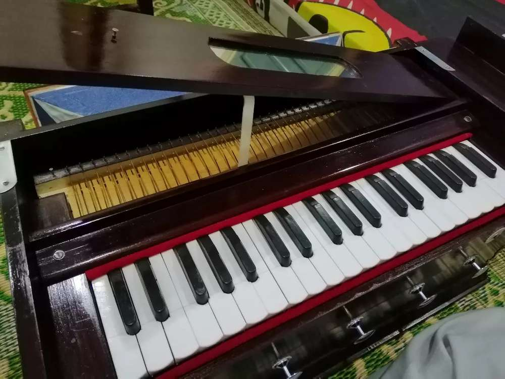 Sales In - New Musical Instruments for sale in Punjab | OLX