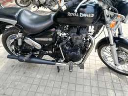 Stone Thunderbird 500 Cc Authorized