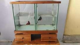 Aquarium Cupang Jual Hewan Peliharaan Terlengkap Di Sidoarjo Kab Olx Co Id