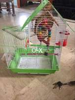 Imported cage for small birds