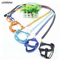 Beautiful cat harness Available