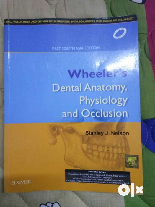 Wheelers Dental Anatomy Physiology And Occlusion Book Chennai
