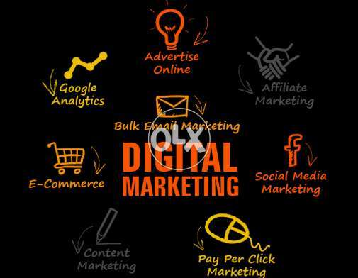 Best Digital Marketing Service Providers In Pakistan - Web