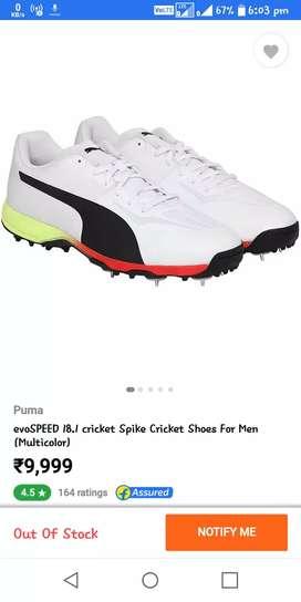 19cc415c447e Puma cricket spikes shoes