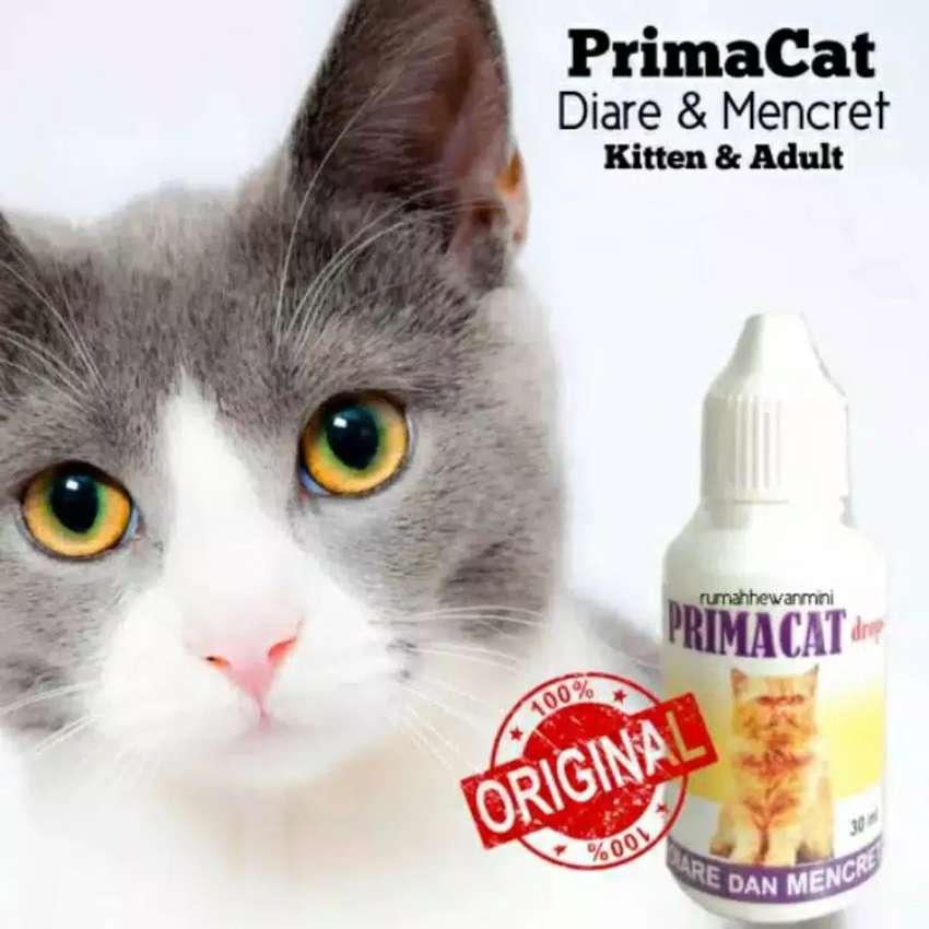 ampuh obat diare dan mencret kucing by primacat 30ml