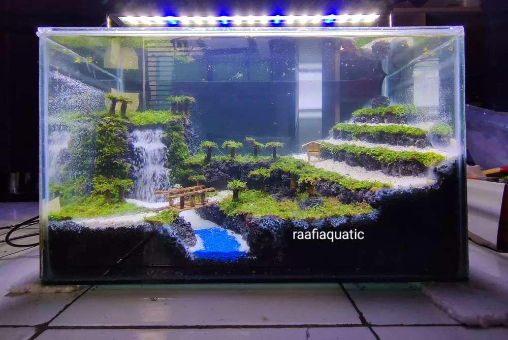 Aquascape Tema Sawah – Gambar.se