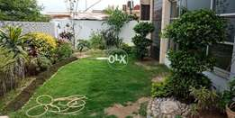 1 kanal Brand New House For Rent DHA Phase 6
