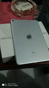ipad mini 4 128gb wifi only
