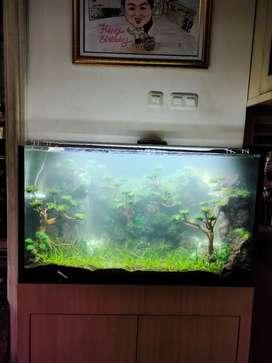 Aquascape di Surabaya Kota - OLX Murah Dengan Harga ...