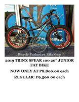 7e470c0ecb6 2019 Trinx Spear 100 20 Junior Fat Bike Mini Fatbike Alloy Mechanical