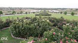 cbr phase 2 10 marla plot available Reasonable rate